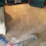 Dirty-Carpet-Cleaned-Pompano Beach