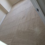 Pompano Beach-Carpet-Clean-room