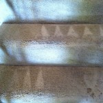 Pompano Beach-Stairs-Carpet-Cleaning