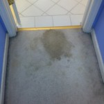 Pompano Beach-Vomit-1-before-carpet