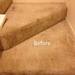 Stairs-Carpet-Cleaning-Pompano Beach-A
