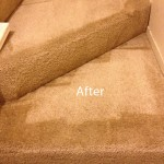 Stairs-Carpet-Cleaning-Pompano Beach-B