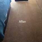 ink stain removal Pompano Beach-B