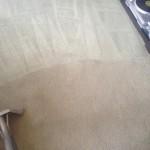 Carpet-Cleaning-Pompano Beach