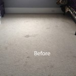 Cranberry Juice Stain Removal Pompano Beach A