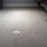 Cranberry Juice Stain Removal Pompano Beach B
