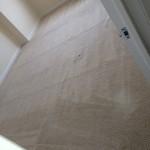 Pompano Beach-Carpet-Clean-room