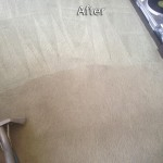 Pompano Beach-Carpet-Cleaning-Company