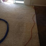 Pompano Beach-Traffic-Area-carpet-cleaners