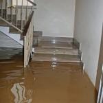 Pompano Beachflood-in-house
